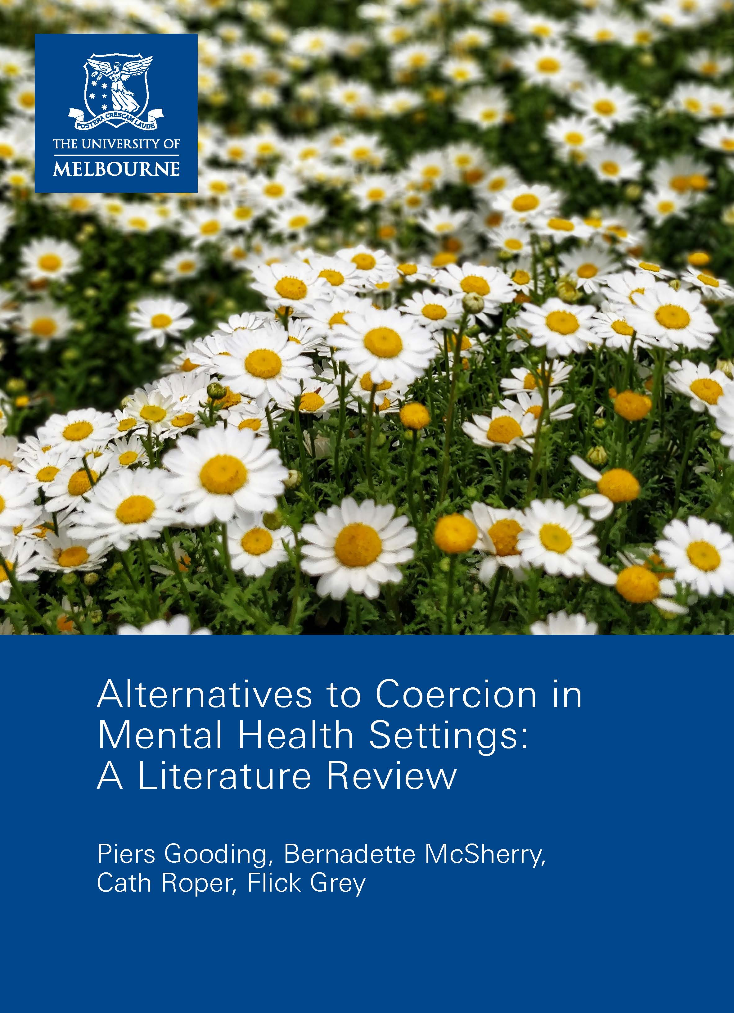 Alternatives To Coercion In Mental Health Settings A Literature Review